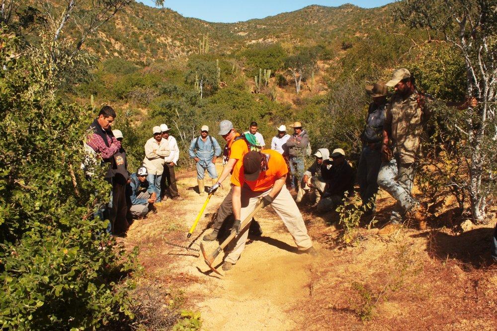 training-trail-construction-paz.JPG