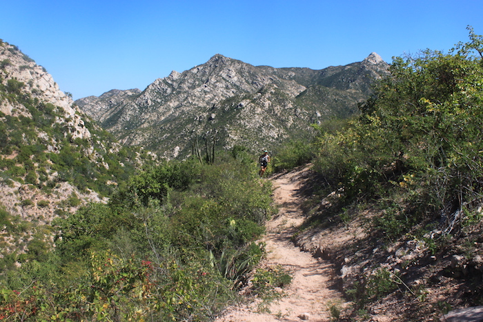 trail-hiking-baja.JPG