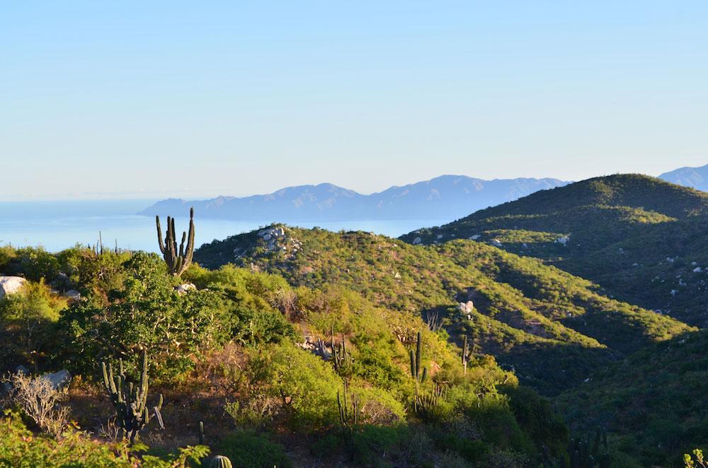 Copy of Ecotourism Ranch Visits