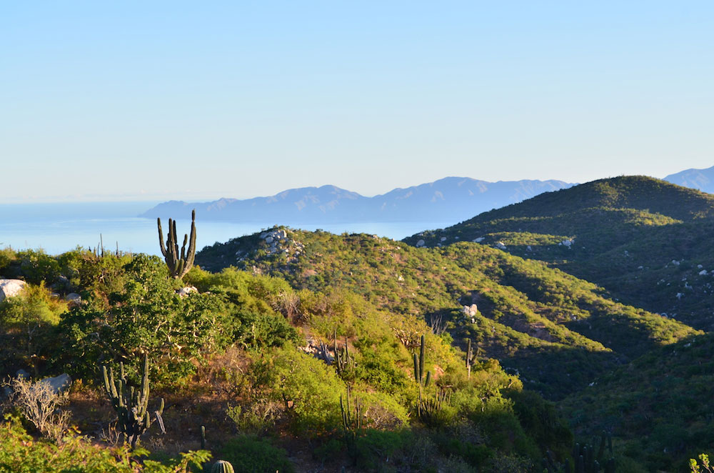 Visitas de Ranchos - Ecoturismo