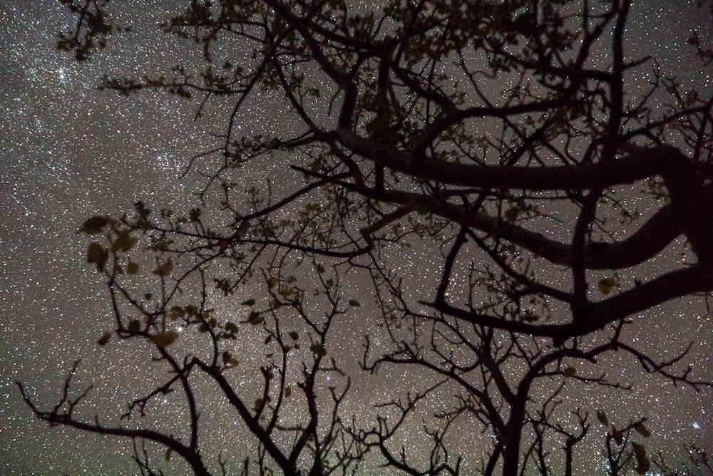 Copy of Dark Sky Preservation