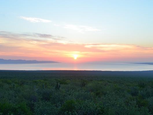 sunrise-ventana-bay-mexico.JPG