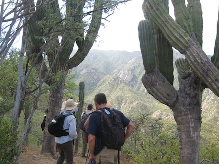 hiking-baja-california-sur.JPG