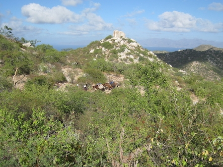 hiking-southern-baja.JPG