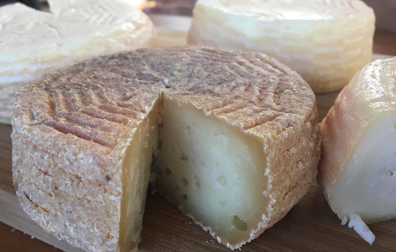 Award-Winning Cheeses — Mexico