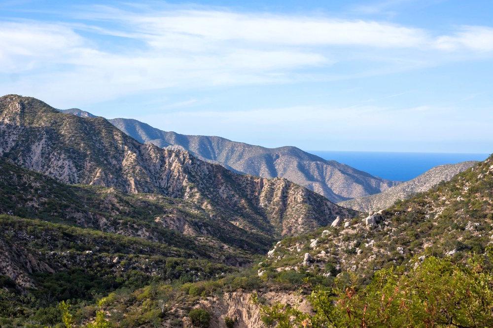 Copy of Tierra - Medio Ambiente - Protección