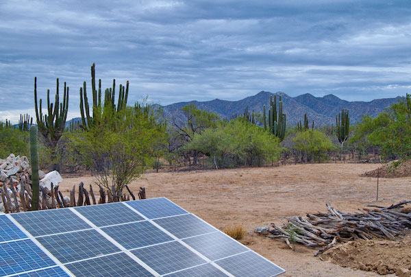 solar-power-farming-mexico