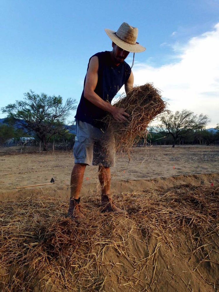 Cultivo de Tierras Secas