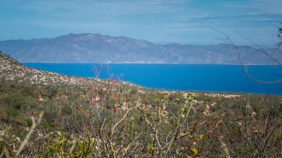 Bahia La Ventana — Isla Cerralvo