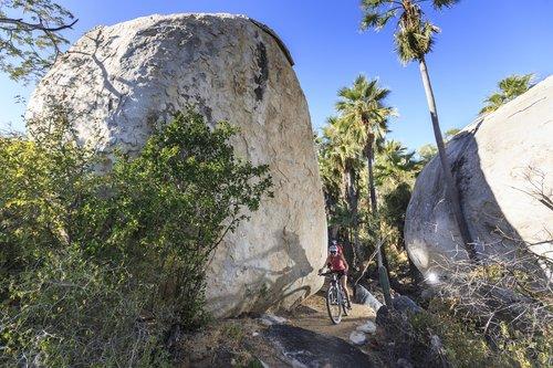 mountain-biking-tours-la-paz-el-sargento-baja-california-sur-mexico.jpg