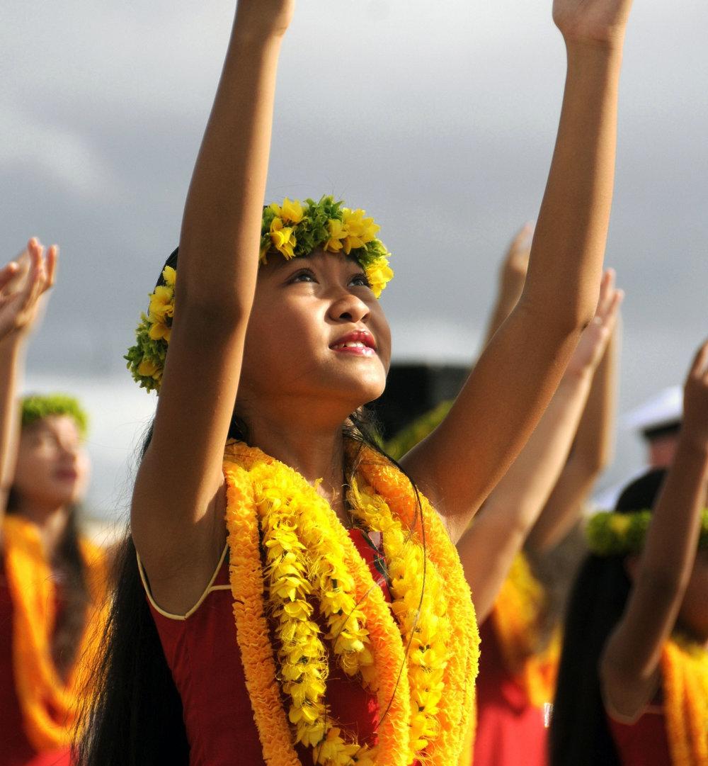 hawaii-878908 smaller.jpg