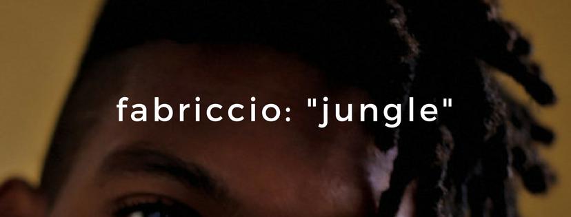 fabriccio jungle brasil r&b neo soul mpb.png