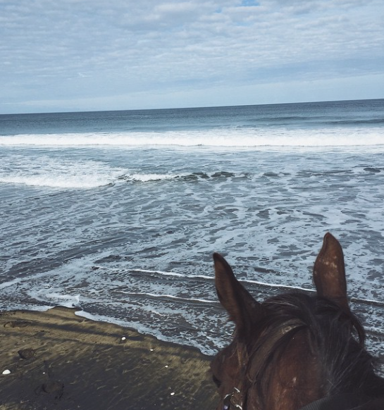 Horseback riding on the beach. Best. View. Ever.