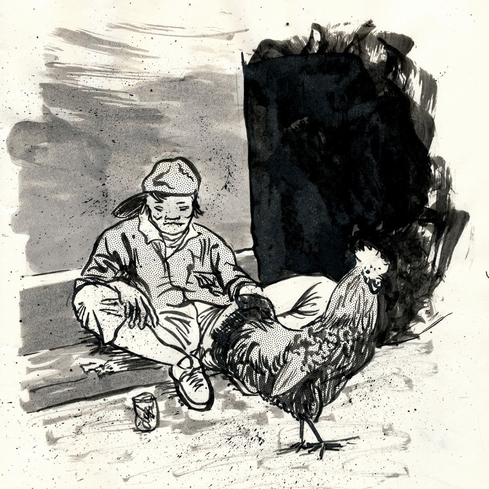 ms003sq-poor-rooster.jpg