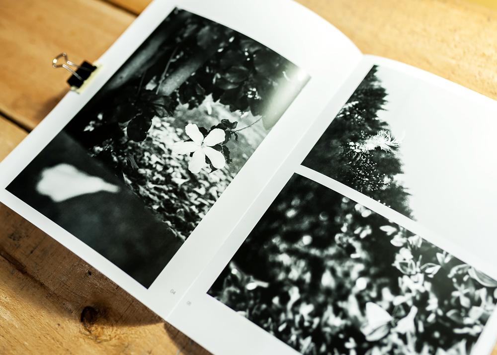 folio-somewhere-near-home-27.jpg