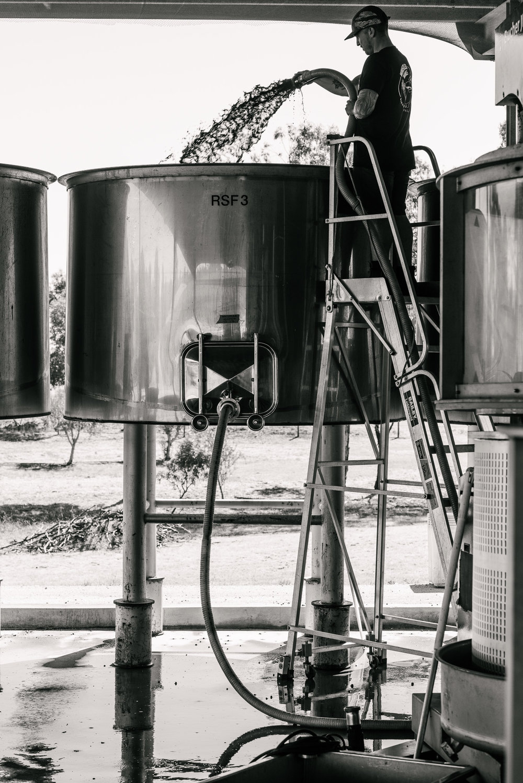 Whistler Wines Vintage 2018 - Daniel Purvis - _DSC5753-2.jpg
