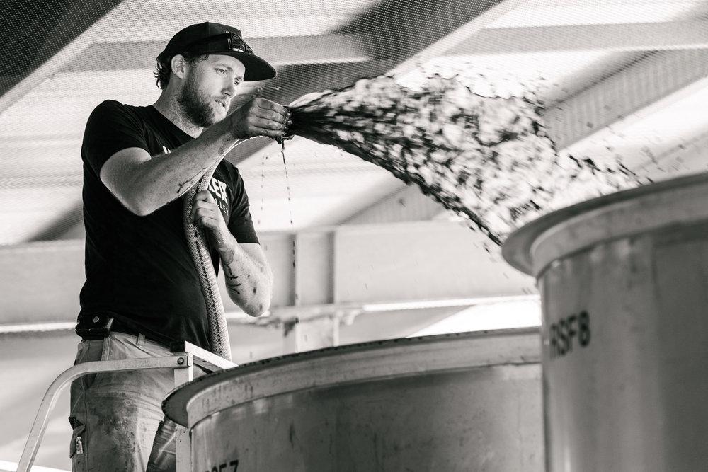Whistler Wines Vintage 2018 - Daniel Purvis - _DSC5878-2.jpg