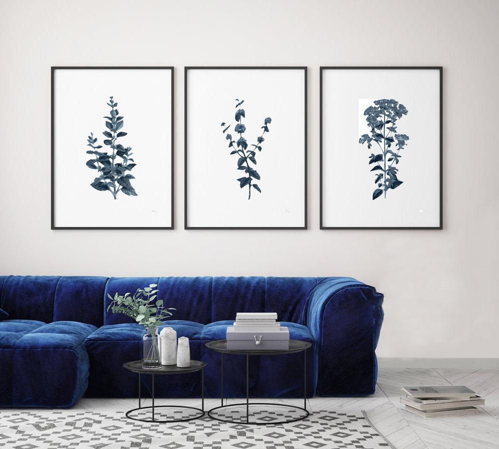 3 botanica azul salon.jpg