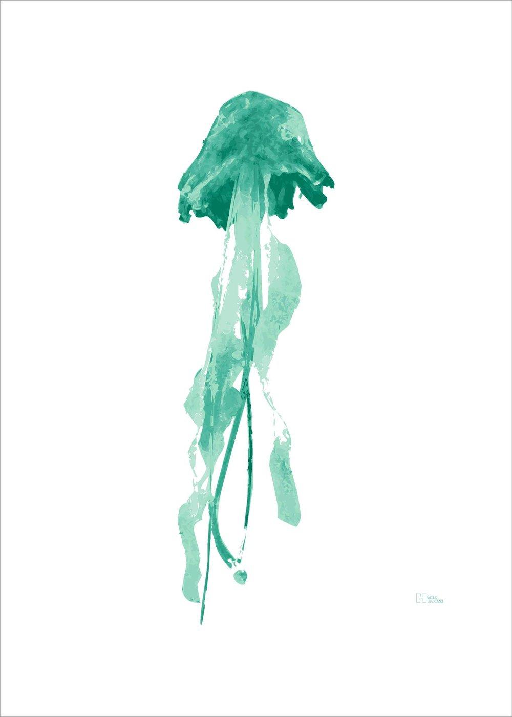 Medusa 1 verde.jpg