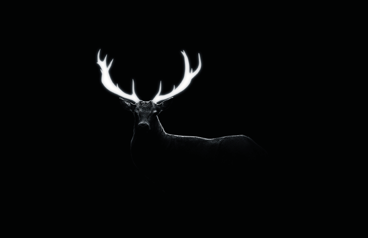 Untitled Stag.png