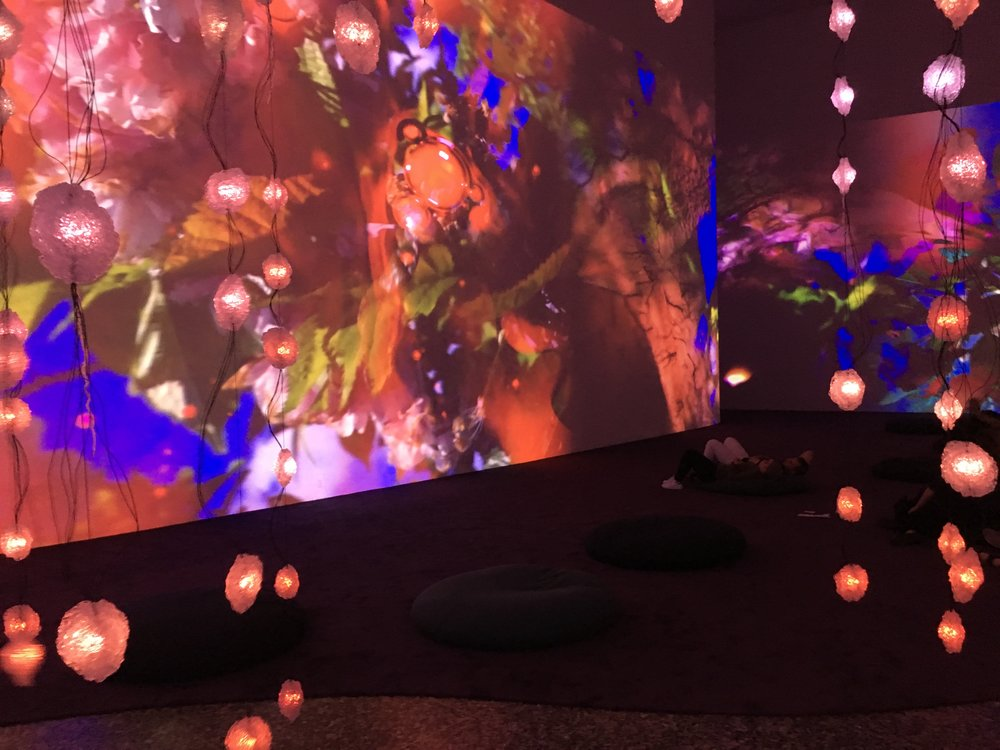 Pipilotti Rist,  Pixel Forest and Worry Will Vanish , 2016 and 2014 (close-up)