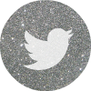 twitter 2 silver round social media icon .png