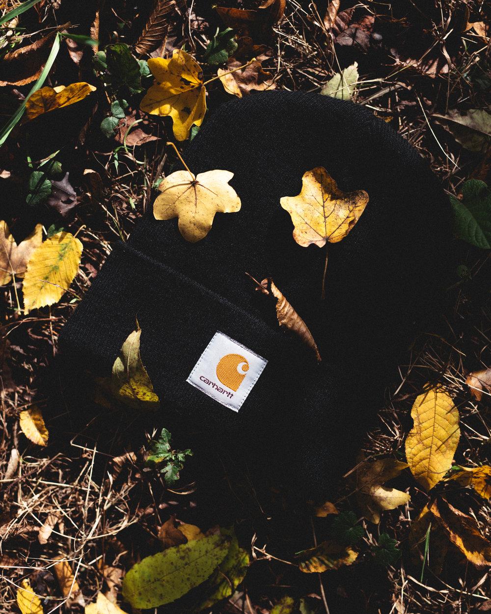 WasDrew_Autumn_Vibes_008.jpg