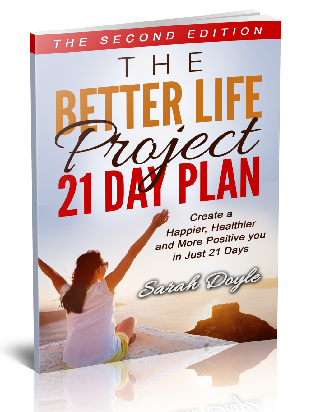 3DThe_Better_Life_Project (1).png