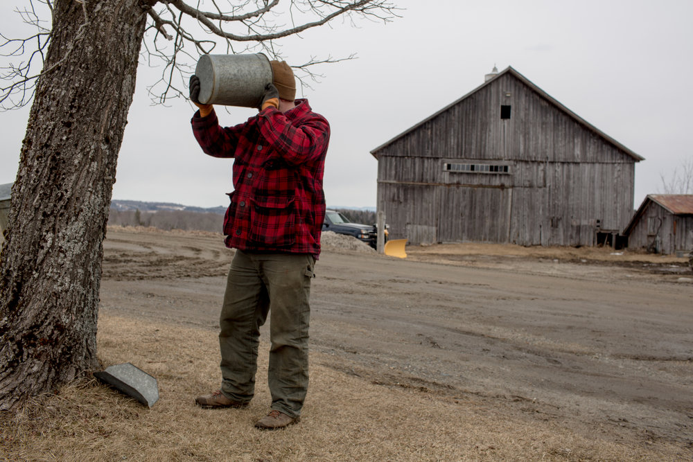 """Tom Galinat, 35, takes a break to drink raw maple sap while tending to chores at his family's maple sugaring business in Peacham, V.T. He moved to the area in 2013 to farm with his family on their land. A father of two as well as the town's clerk, Galinat says he is a gun owner who is in favor of what he calls common sense gun control. """"We need gun safety measures passed because we're abusing that,"""" he said. """"It's not the gun, it's the features of the gun. Like higher capacity magazines."""" For Galinat and his family, their livelihood relies on owning a firearm, hunting for food as well as its use on their farm in rural Vermont. He explained a gun is no different of a tool to him than a hammer or saw and he grew up with his grandfather using a gun to hunt. Galinat inherited his grandfather's Savage Fox Model D side-by-side two-trigger shotgun which was once used for bird hunting and is now brought out each year for opening day of turkey hunting. There is a sentimental attachment, he said, describing a worn out area on the stock where his grandfather's hand would grip. """"I don't want to give up my guns,"""" he said, following chores at his farm on Friday, April 7, 2018. """"I relate to both sides so well.""""John Tully for The New York Times"""