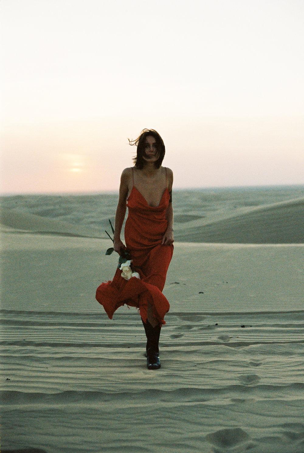 DesertFilm2 (90 of 101).jpg