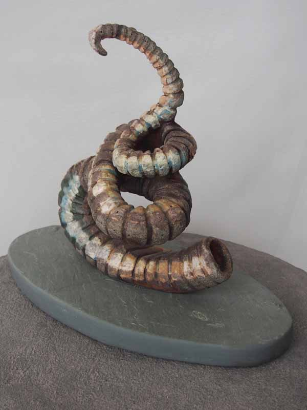 Corkscrew Ammonite   2013  Anagama Fired Ceramic   on Slate Base  16L. 9W. 13H  Inches © Naomi Teppich