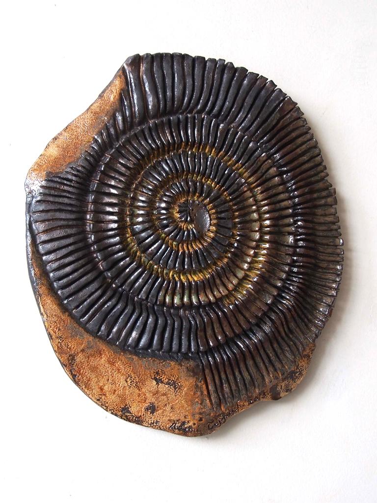Embedded Ammonite