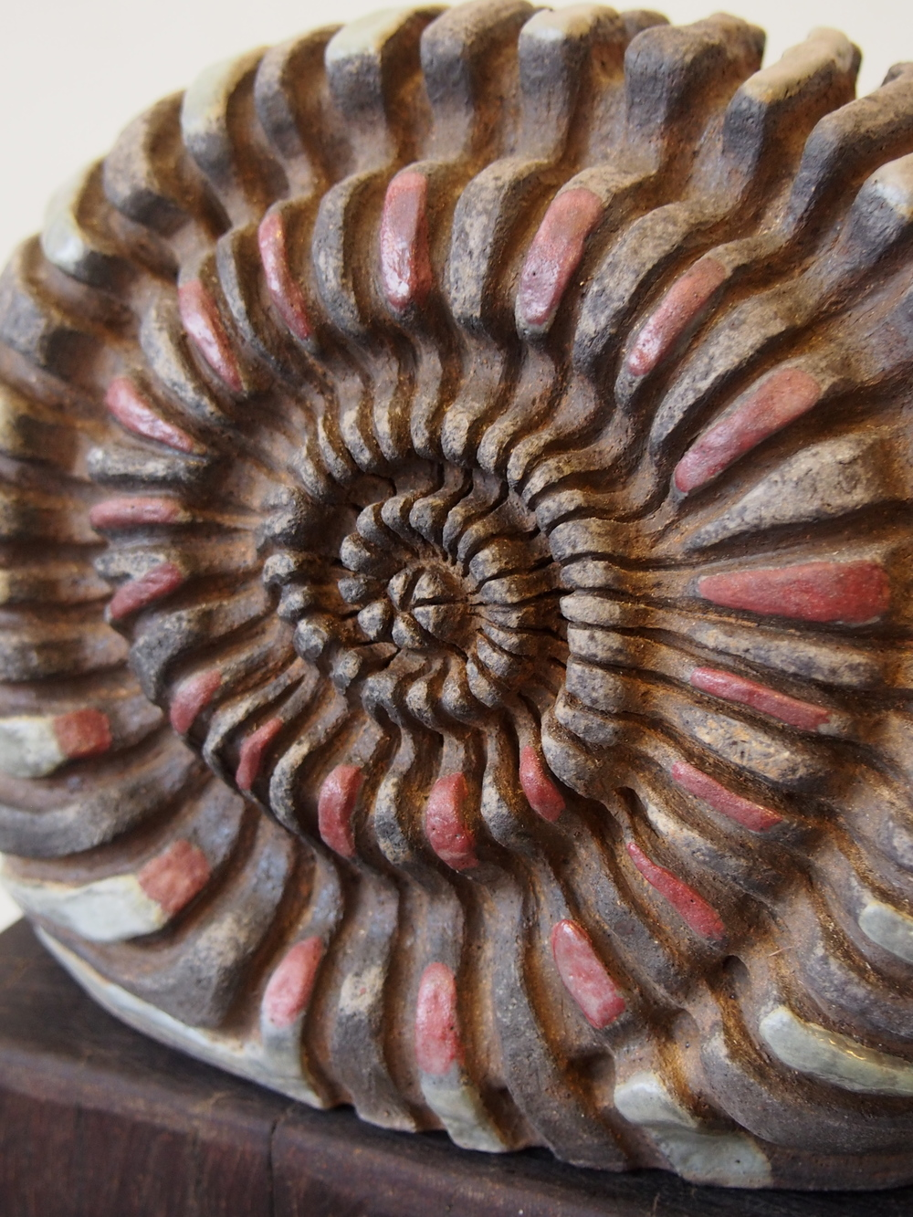 Chunk Ammonite