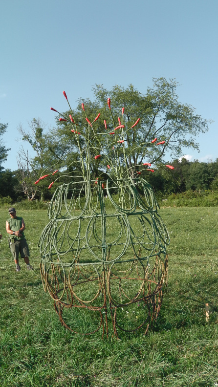 Cactus Cocoon