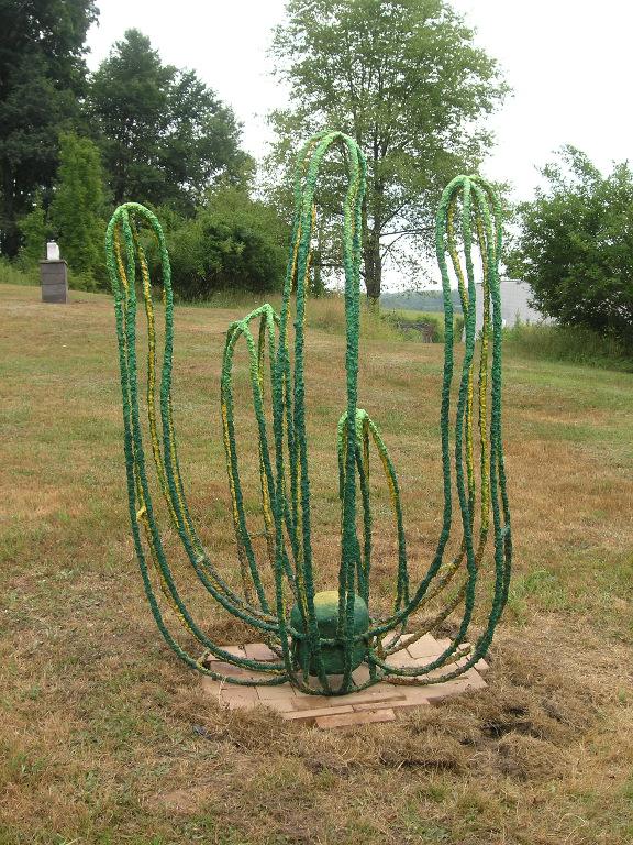 Cactus Conundrum