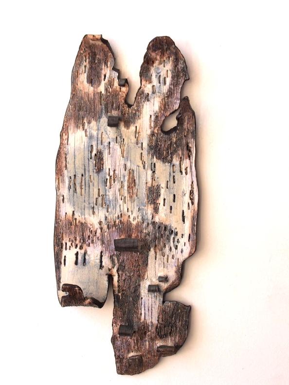 Bark Fragment I