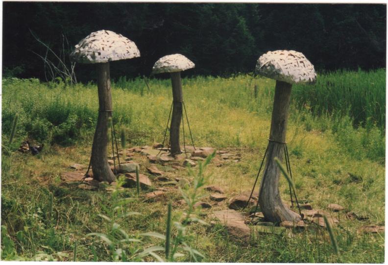 Mushroom Umbrellas