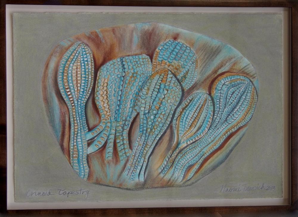 Crinoid Tapestry