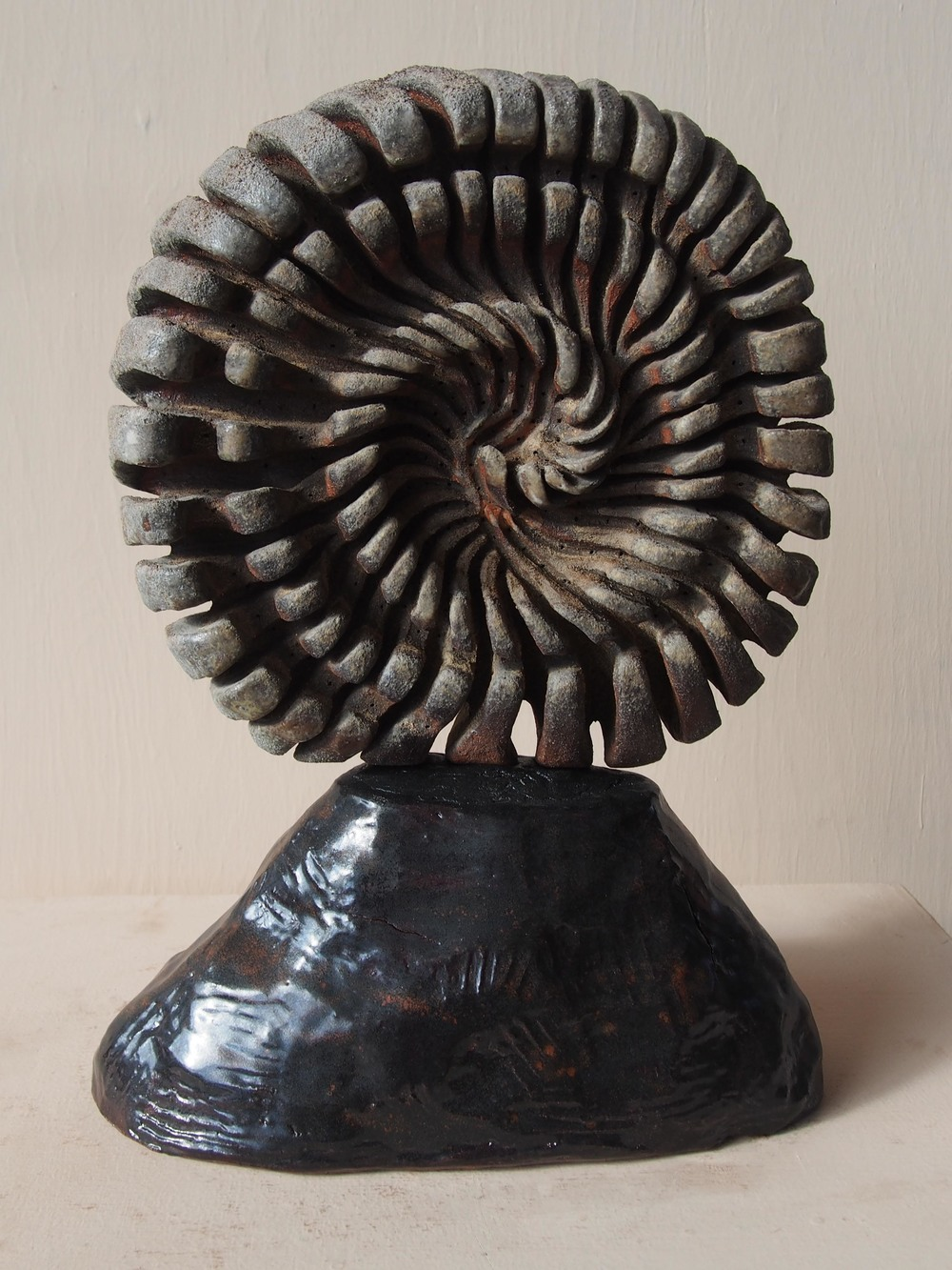 Ammonite Wheel