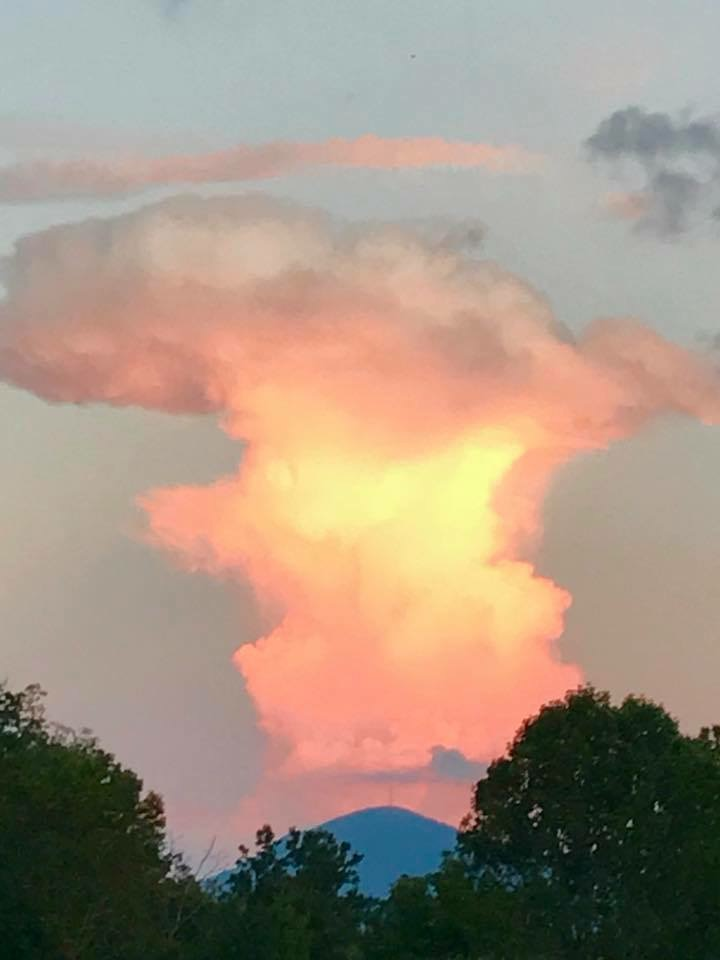 Photo from Canton, NC taken by Carol Larsen