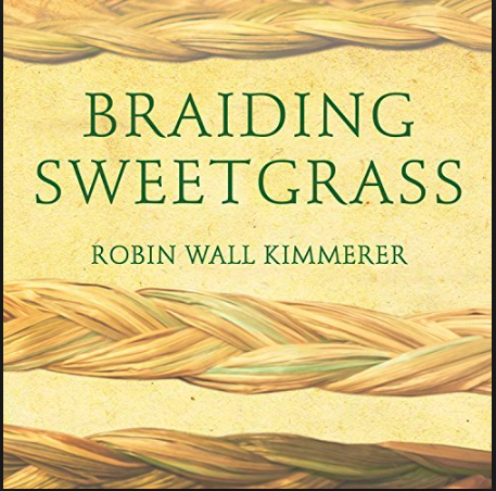 Cover of 'Braiding Sweetgrass'