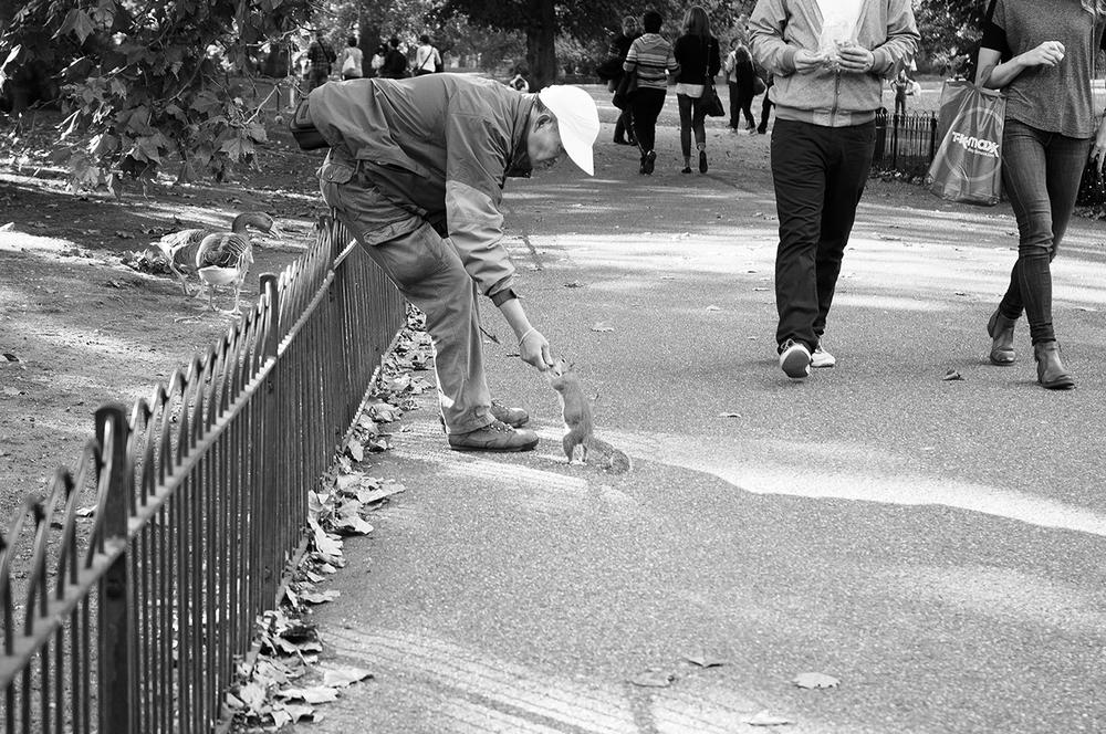 092914_OldmanFeedsSquirrel_AndrewFosterPhoto.jpg