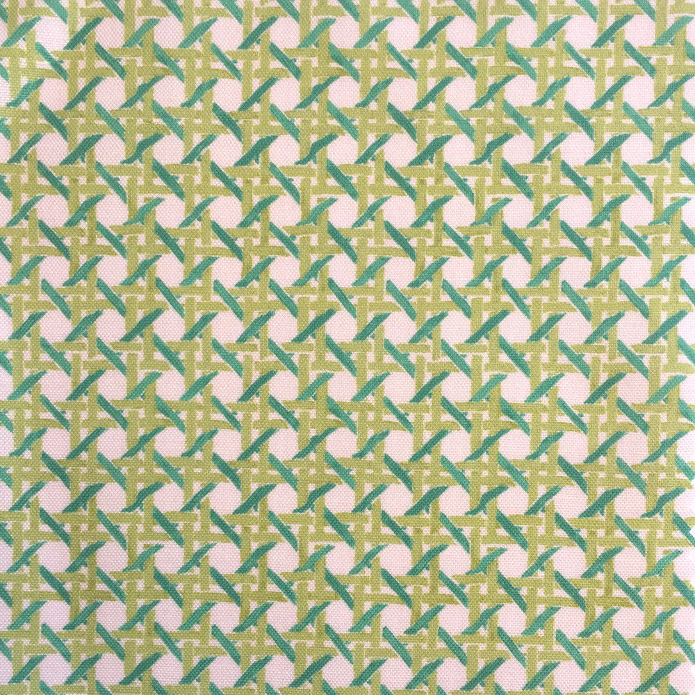 MINI Cane Print in CREAM/JADE  PALM SPRINGS COLLECTION