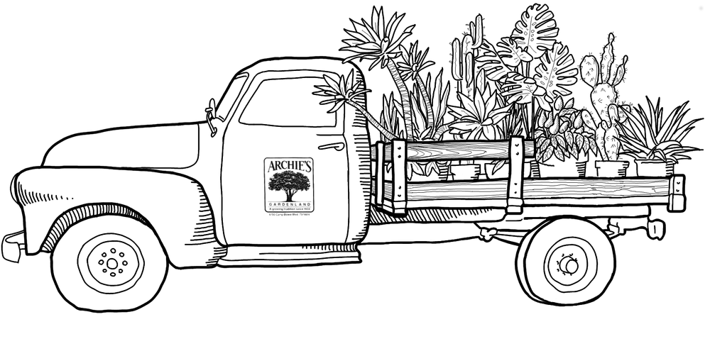Archie's Truck 4.png
