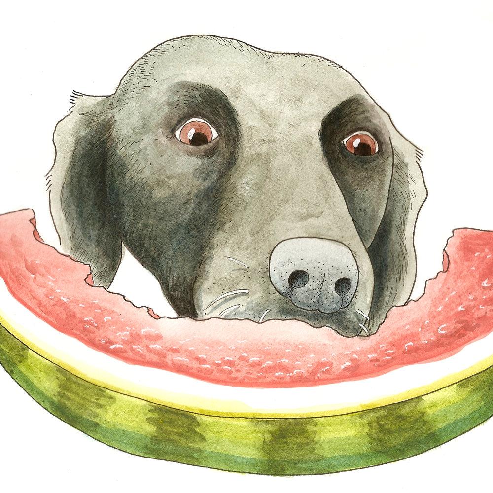 Flash with Watermelon 2.jpg