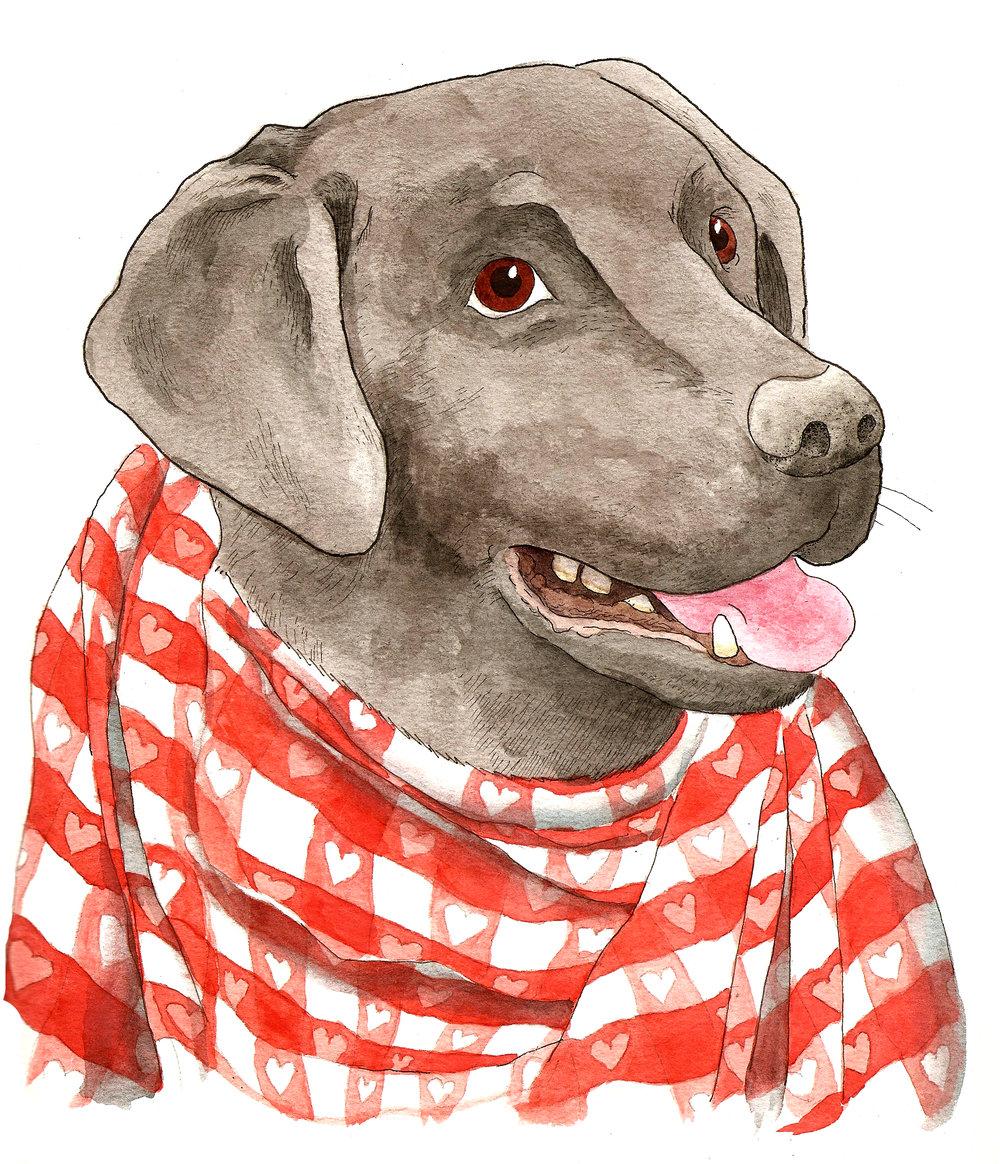 Hector:Dogger 2.jpg