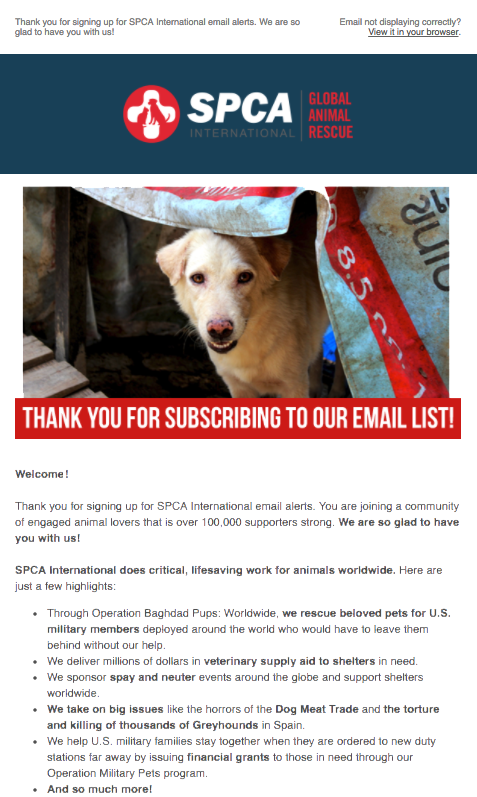 SPCA International Welcome Email