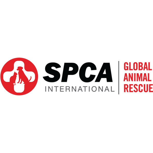 SPCA International - square logo.png