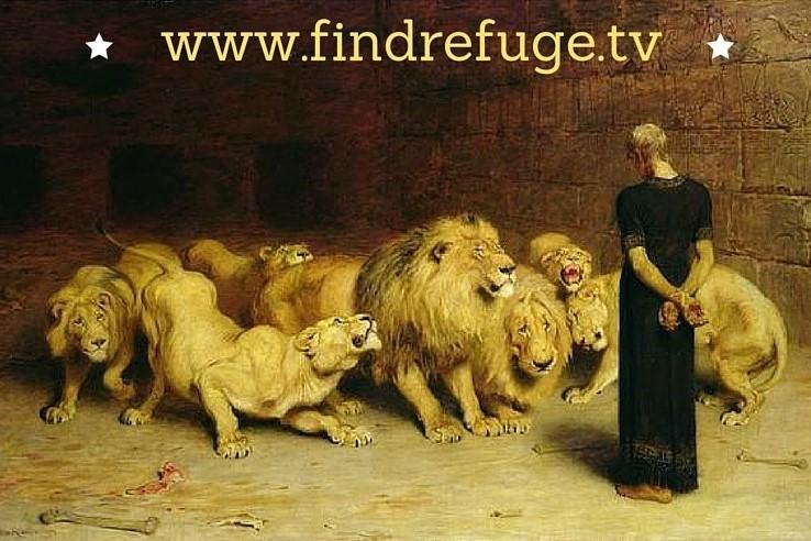 www.findrefuge.tv.jpg