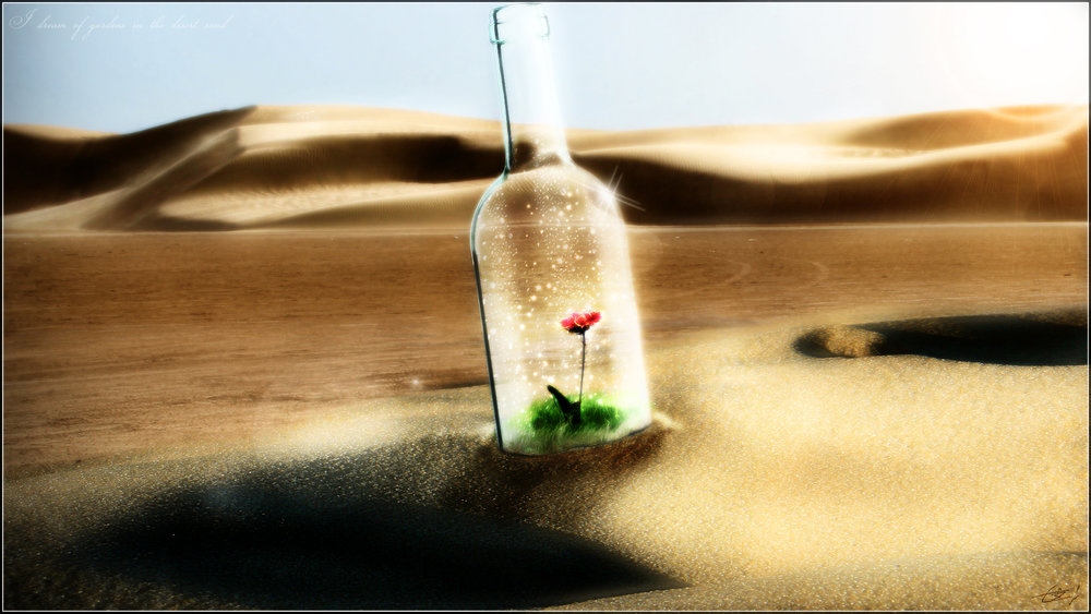 desert_rose_by_trl_phorce-d5513vc.jpg
